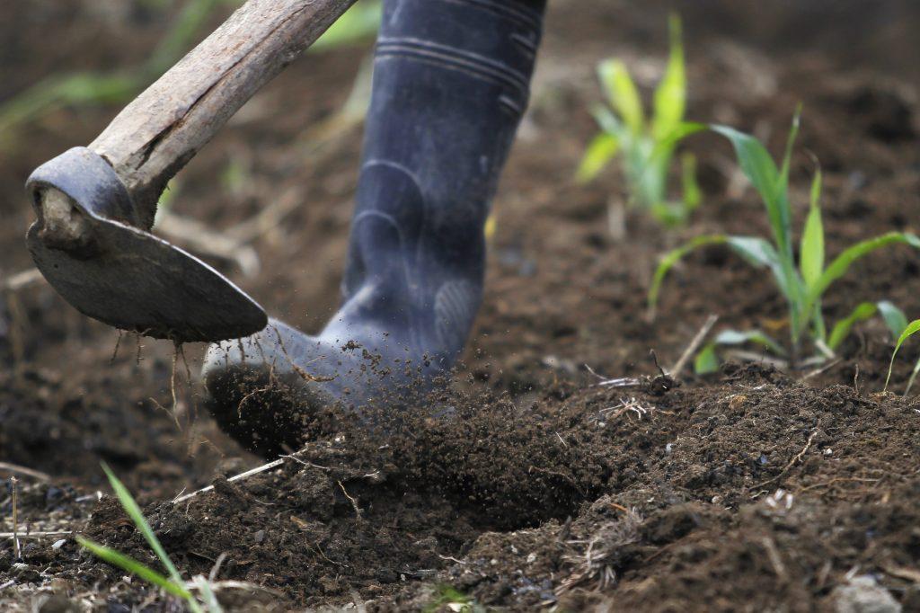 New York Soil Conservation