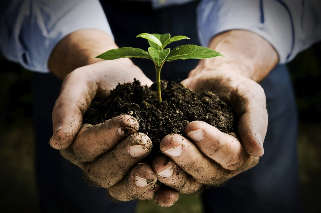 Hattiesburg Mississippi Soil Conservation Office