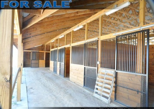 florida acreage and stables