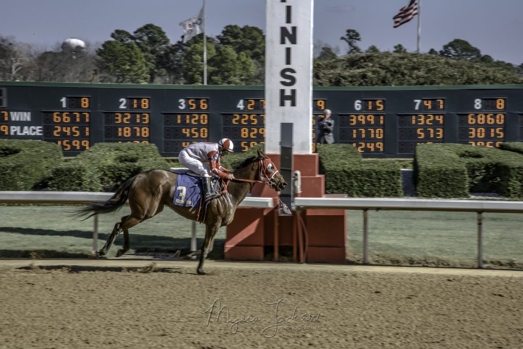2018 Kentucky Derby, A Thoroughbred Horses Day in the Sunshine